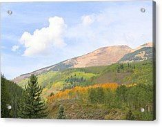 Crested Butte Acrylic Print by Jessie Foster
