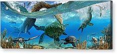Cretaceous Marine Scene Acrylic Print