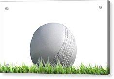 Cricket Ball Resting On Grass Acrylic Print by Allan Swart