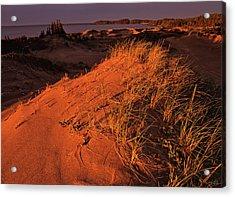 Crimson Dunes Acrylic Print