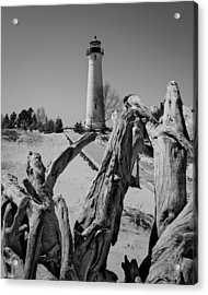 Crisp Point Lighthouse With Driftwood Acrylic Print