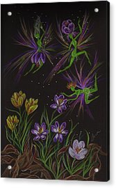 Crocus Acrylic Print by Dawn Fairies