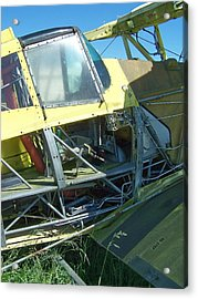 Crop Duster Acrylic Print by Gene Ritchhart