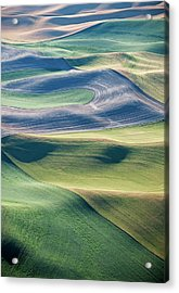 Crops And Contours Acrylic Print