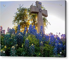 Da225 Cross And Texas Bluebonnets Daniel Adams Acrylic Print