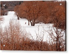 Crosscountry Skier Acrylic Print