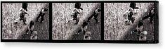 Crossing The Shadow Line Acrylic Print by Bob Orsillo