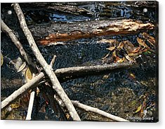 Crossing Waters Acrylic Print by Nicholas Seward