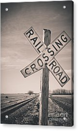 Crossings Acrylic Print by Christina Klausen