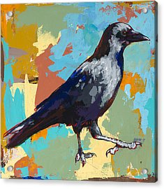 Crow #2 Acrylic Print by David Palmer