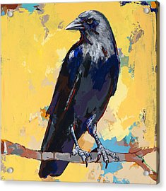 Crow #4 Acrylic Print by David Palmer