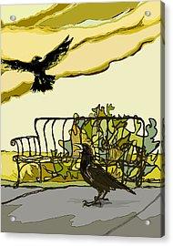 Crow Calling Acrylic Print by Peggy Wilson