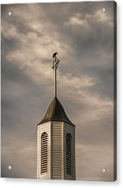 Acrylic Print featuring the photograph Crow On Steeple by Richard Rizzo