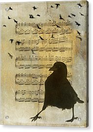 Crow Strut Music Sheet Acrylic Print by Gothicrow Images