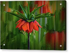 Acrylic Print featuring the photograph Crown-imperial Abstract #h5 by Leif Sohlman