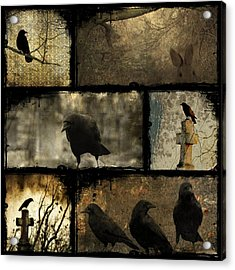 Crows And One Rabbit Acrylic Print