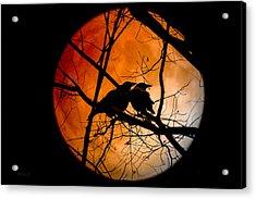 Crows Moon Acrylic Print