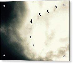 Crows On Christmas Eve 1 Acrylic Print