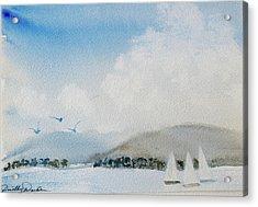 Cruising In Company Along The Tasmania Coast  Acrylic Print