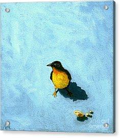 Crumbs -bird Painting Acrylic Print by Linda Apple