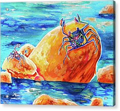 Crustacean Duo  Acrylic Print by Marika Segal