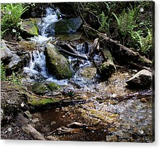 Acrylic Print featuring the photograph Crystal Clear Creek by Ben Upham III