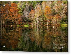 Acrylic Print featuring the photograph Crystal Clear by Iris Greenwell