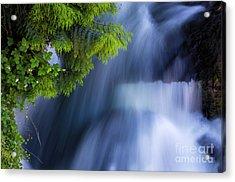Crystal Creek Waterfalls Acrylic Print