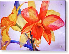 Crystal Orchids Acrylic Print by Estela Robles
