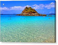 Crystal Waters Acrylic Print by Scott Mahon