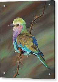 Crystal's Bird Acrylic Print