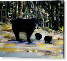 Cubs With Momma Bear - Dreamy Version - Black Bears Acrylic Print