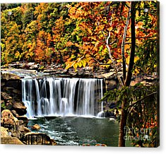 Acrylic Print featuring the photograph Cumberland Falls by Ken Frischkorn