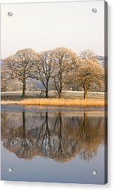 Cumbria, England Lake Scenic With Acrylic Print by John Short