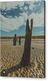Cunnigar Groynes 3 Acrylic Print