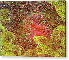 Cup Coral Deep Dreams Acrylic Print by Henry Jager