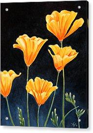 Cups Of Gold Acrylic Print by Arie Van der Wijst