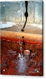 Curative Water Acrylic Print by Sascha Meyer
