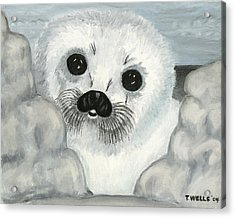 Curious Arctic Seal Pup Acrylic Print by Tanna Lee M Wells