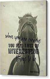 Curious Kirby Quote Acrylic Print by JAMART Photography