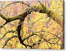 Curled Branch In Yellow Acrylic Print