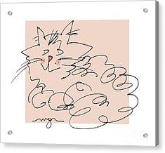 Curly Cat Acrylic Print