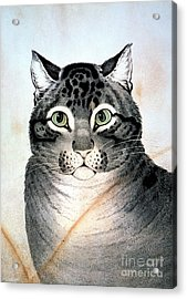 Currier And Ives Cat Acrylic Print by Granger