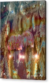Curtain Call Acrylic Print by Gabrielle Schertz