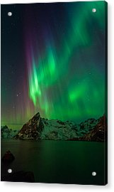 Curtains Of Light Acrylic Print by Alex Conu