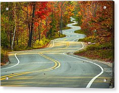 Curvaceous Acrylic Print