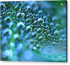 Curve Of The Web Acrylic Print