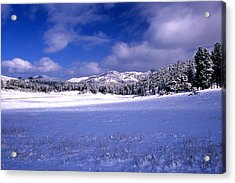Custer State Park Acrylic Print by Barry Shaffer