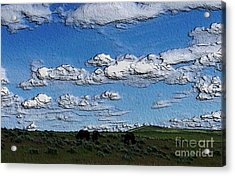 Acrylic Print featuring the photograph Custer's Horses 1 by Erica Hanel