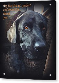 Custom Paw Print Midnight My Best Friend Acrylic Print